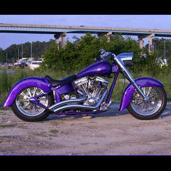 dean's-purple-flame-8